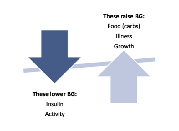 While many things affect blood sugar levels, these are the major factors.